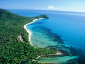 Cape Tribulation Camping - Coogee Beach Accommodation