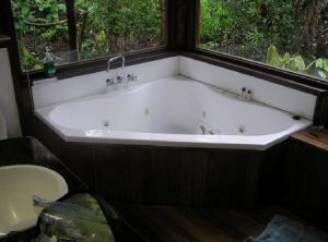 The Canopy Rainforest Tree Houses and Wildlife Sanctuary - Coogee Beach Accommodation