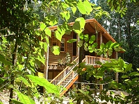 Rivers Edge Rainforest Retreat - Coogee Beach Accommodation