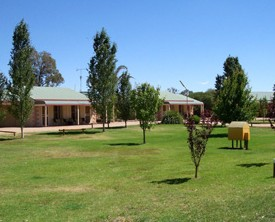 Narrandera Caravan Park - Coogee Beach Accommodation