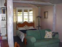 Bunnyconnellen Olive Grove and Vineyard - Coogee Beach Accommodation