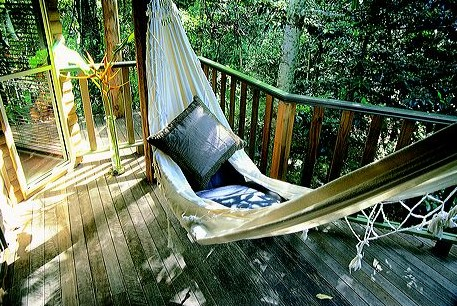 Narrows Escape Rainforest Retreat - Coogee Beach Accommodation
