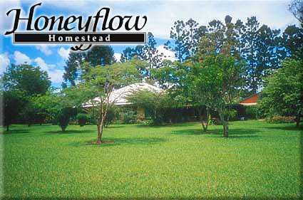 Honeyflow Homestead - Coogee Beach Accommodation