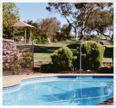 BEECHWORTH HEIGHTS - Coogee Beach Accommodation