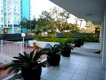 Carlton Apartments - Coogee Beach Accommodation