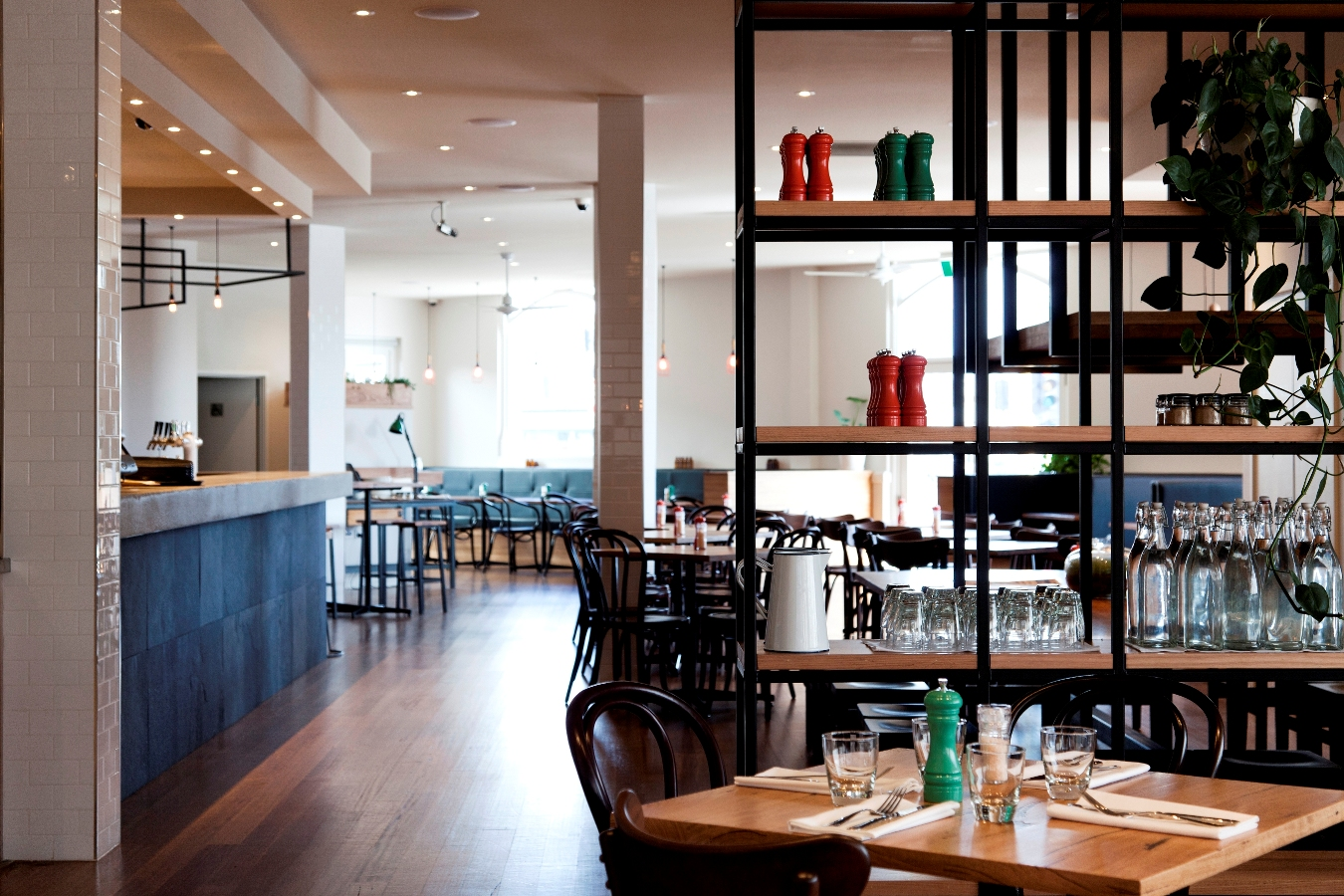 Plough Hotel - Coogee Beach Accommodation