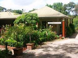 Treetops Bed And Breakfast - Coogee Beach Accommodation