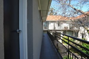 Buckingham International Serviced Apartments - Coogee Beach Accommodation