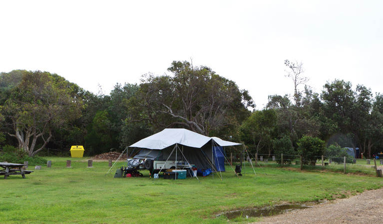 Illaroo campground - Coogee Beach Accommodation