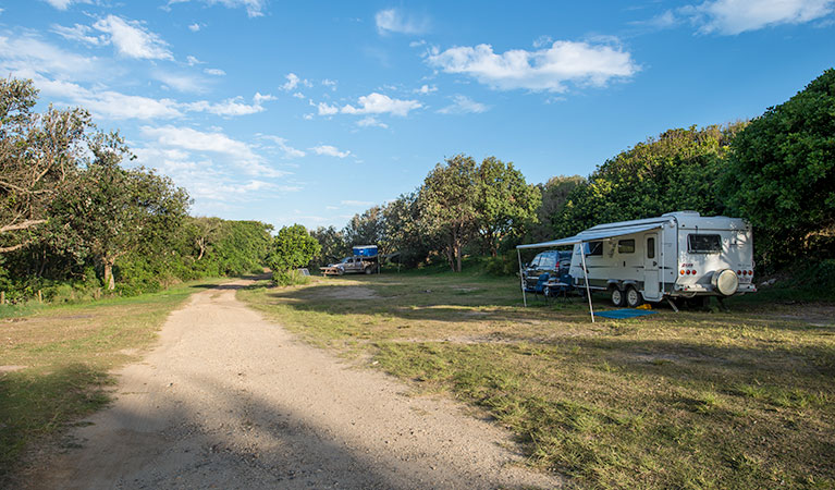 Racecourse Campground - Coogee Beach Accommodation