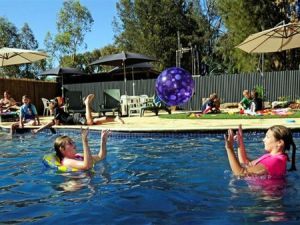 Kingston On Murray Caravan Park - Coogee Beach Accommodation