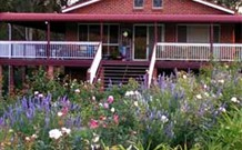 Rose Patch Bed and Breakfast - Coogee Beach Accommodation