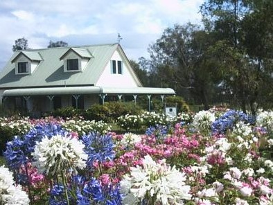 Emmas Cottage Vineyard - Coogee Beach Accommodation