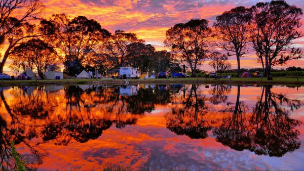 Coonawarra Bush Holiday Park - Coogee Beach Accommodation
