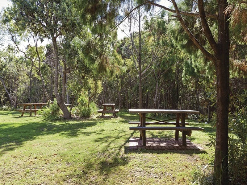 Illaroo group camping area - Coogee Beach Accommodation