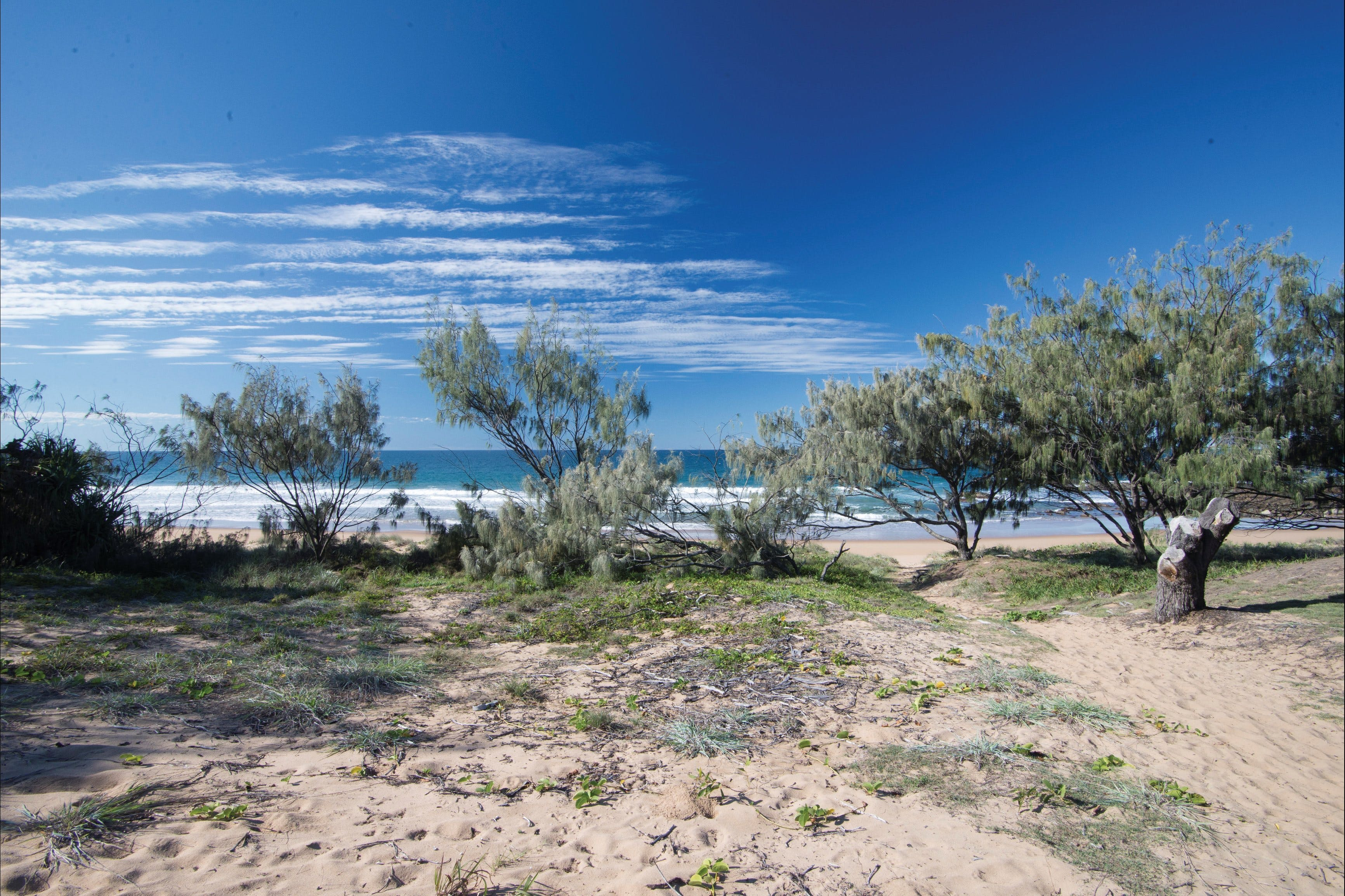 Deepwater National Park camping - Coogee Beach Accommodation
