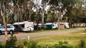 Buronga Riverside Tourist Park - Coogee Beach Accommodation