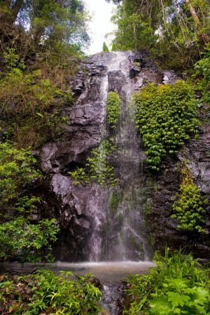 Nimbin Waterfall Retreat - Coogee Beach Accommodation