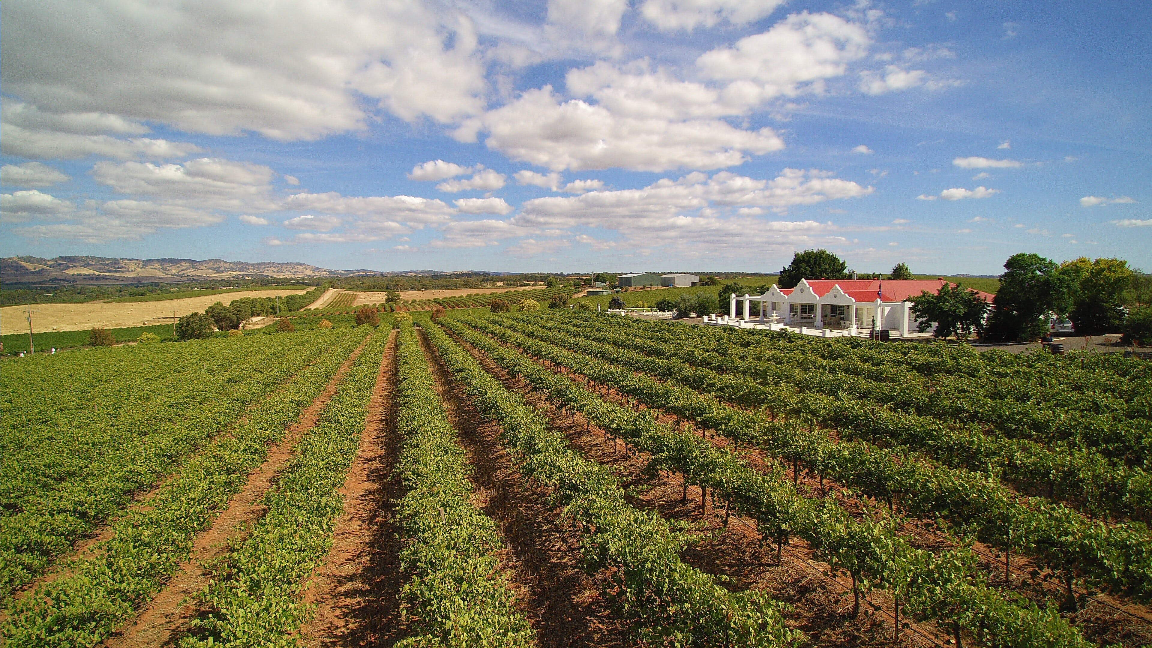 1837 Barossa Luxury Vineyard Cottages - Coogee Beach Accommodation