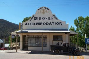Snug as a Bug Motel - Coogee Beach Accommodation