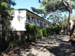 Norwood Apartments - Coogee Beach Accommodation